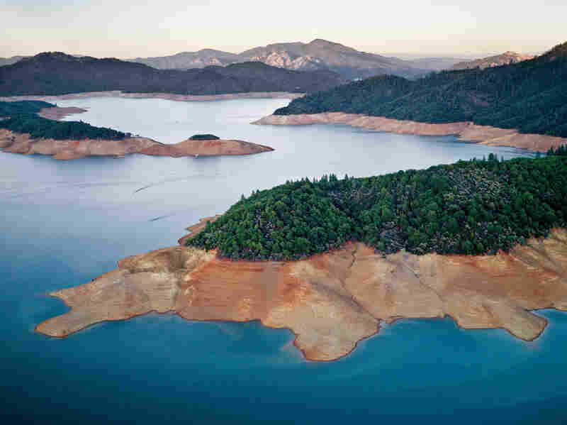 """A three-year drought has shrunk Shasta Lake to about 60 percent ofits long-term level, reducing water to cities and farms."""