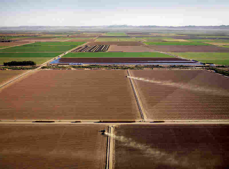 """Tractors kick up dust in the Imperial Valley, where rainfall averages three inches a year. Irrigation enables California's farmers to grow half of all U.S. vegetables, fruits and nuts."""