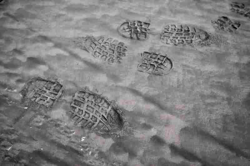 Footprints in volcanic ash in eastern Iceland, left by scientists who collected samples to send to labs.