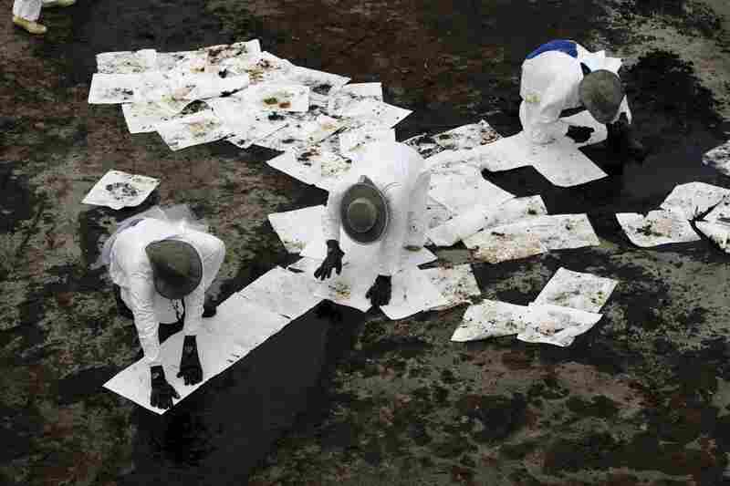 Workers use absorbent pads to remove oil that has washed ashore from the spill in Grand Isle, La., June 6.