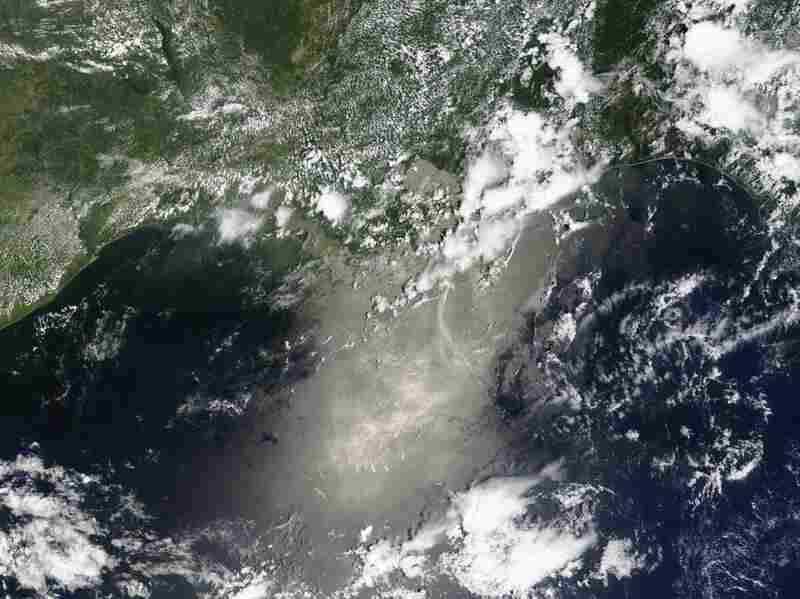 The oil slick off the coast of Louisiana, seen from above.