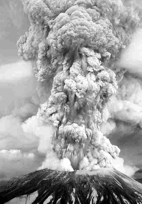 Mount St. Helens erupts on the morning of May 18, 1980. Thirty years later, the site is now home to new life.