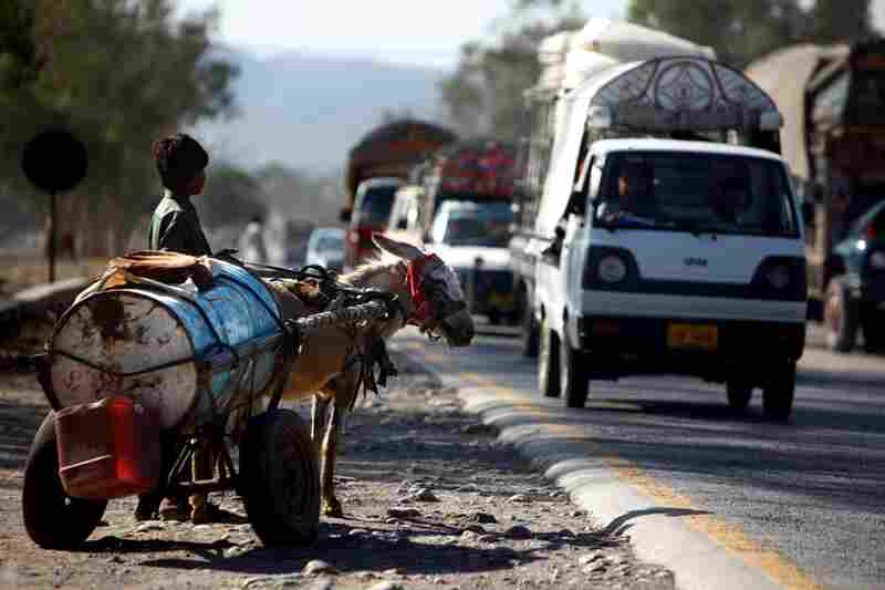 A boy and his donkey wait to cross the road between Islamabad and Peshawar.
