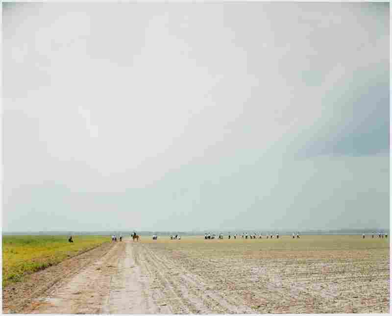 The farm, Angola State Prison, La., 2002