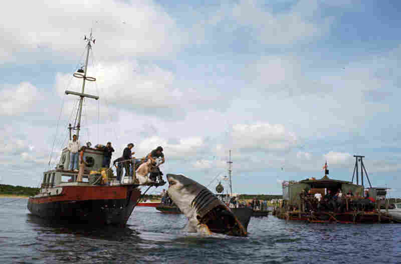 Two of the three Bruces had their sides exposed for easier, faster maintenance of the shark.  Bruce is controlled by a crew - and a considerable amount of hardware - visible on the skiff to the right.