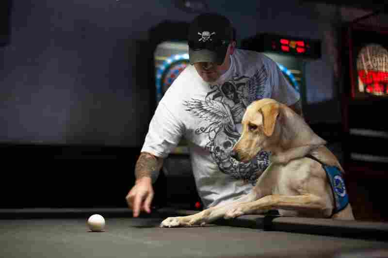 Sanford's service dog, Harley, takes interest in a cue ball during a social outing with other Mentis patients.