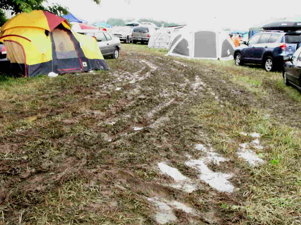 A picture of a muddy field at Bonnaroo