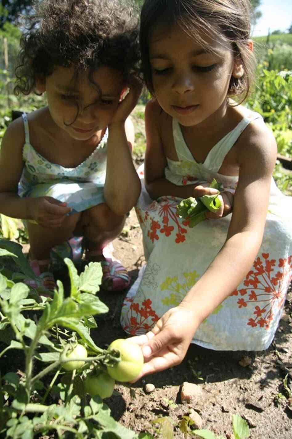 In the children's book We Grew It, Let's Eat It, as told by the twins to Kenin, the girls learn about urban gardening.