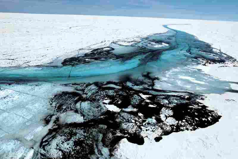 The black splotches mingled with ice and meltwater are cryoconite — powdery debris blown to Greenland from often distant deserts, fires, coal plants and diesel engines. It reduces the ice's reflectivity, increasing absorption of solar heat.