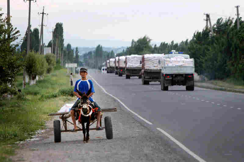 A boy rides a donkey along a highway, as the first Kyrgyz Emergency Situation Ministry motorcade passes by with 70 tons of flour bags for the hungry in Osh, Kyrgyzstan.