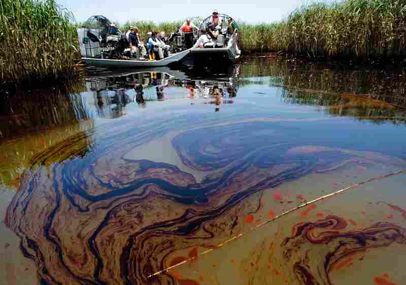 Oil pools around the base of Rousso Cane near Pass a Loutre where oil has washed ashore on May 19.