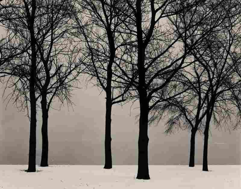 Chicago (Trees in Snow), gelatin silver print, est. $70,000-$100,000