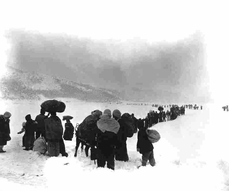 A seemingly endless file of Korean refugees slogs through snow outside Kangnung in January 1951.