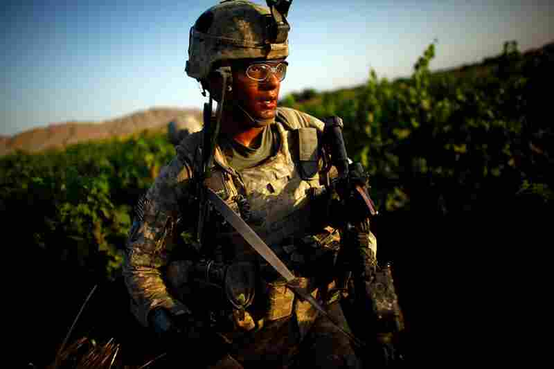 Staff Stg. Jamie Newman, with Bravo Company of the 101st Airborne Division, walks through grape vineyards in Kandahar province. Bombs and homemade explosive devices make road travel too dangerous. The Taliban live in the area, planning their attacks and hiding weapons here.