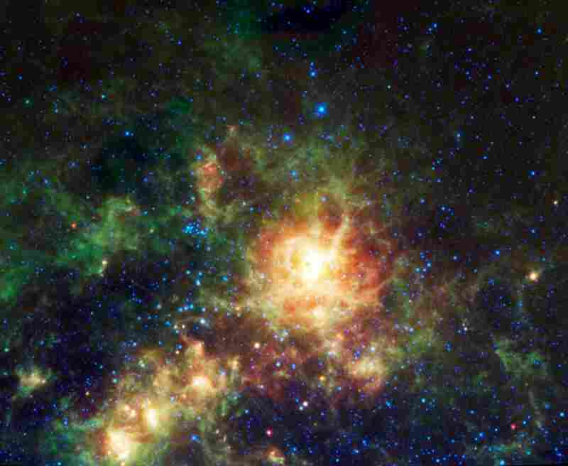 The Tarantula nebula is a giant star-forming region in the Large Magellanic Cloud galaxy. Color is representational: blue and cyan represent infrared light at wavelengths of 3.4 and 4.6 microns.