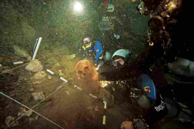 An archaeologist lifts a centuries-old Lucayan Indian skull from a  site 110 feet down into Sanctuary Blue Hole on Andros Island.