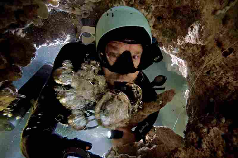 Kenny Broad fights to get to the surface, his air bubbles forced down by the current in a blue hole on Abaco.