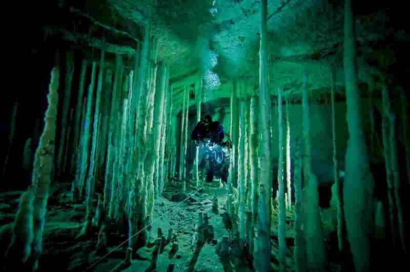 A diver navigates a stalagmite forest in Dan's Cave on Abaco Island. One fin kick could shatter mineral formations tens of thousands of years old.