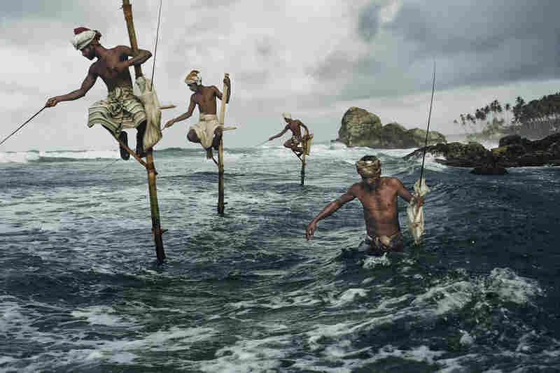 Fisherman at Weligama, Sri Lanka