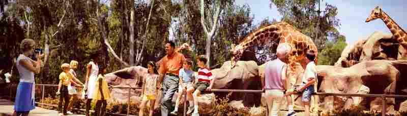 San Diego Zoo, San Diego. Displayed 1968