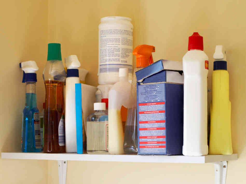Household cleaners on a shelf