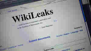 Security Violation?: U.S. Troops Told They Can't Access WikiLeaks Website
