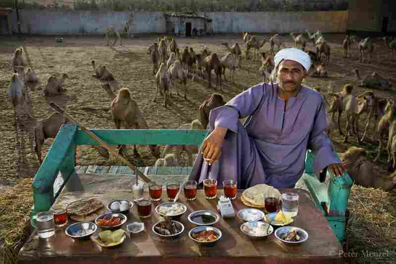 Camel broker Saleh Abdul Fadlallah in Egypt is 40 years old, 5 foot 8, and weighs 165 pounds. His intake of calories on a typical April day was 3,200 kcals. His menu: eggs with butter, fava beans, country bread, potato chips, feta cheese, soup, rice, black tea, etc.