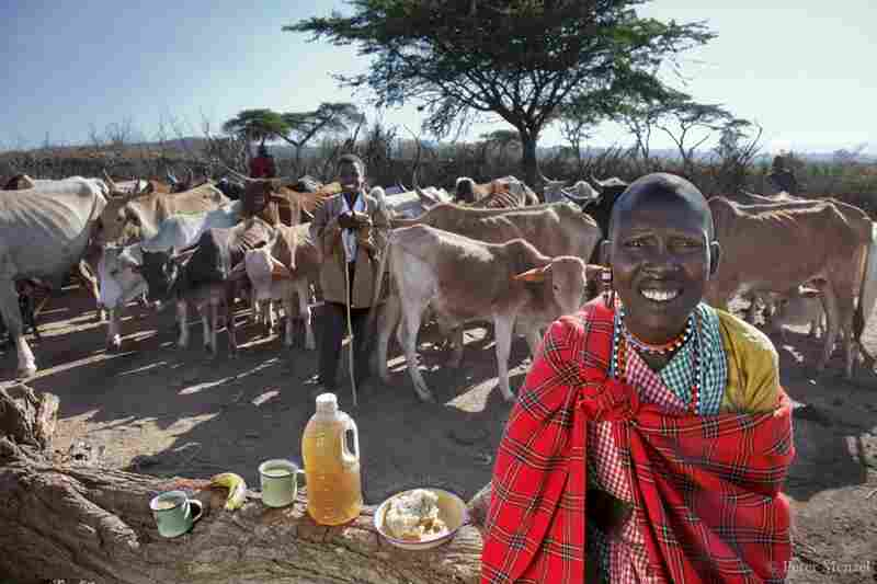 Noolkisaruni Tarakuai, the third of four wives of a Maasai chief near Narok, Kenya. She is 38 years old, 5 foot 5 and 103 pounds, and consumed 800 calories on a typical January day. She is photographed here with her day's worth of food: largely maize meal and milk.