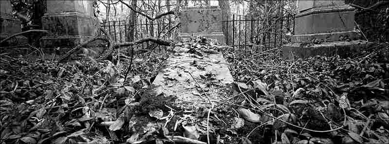 A family cemetery dating from the mid-1850s located in woods outside Utica.