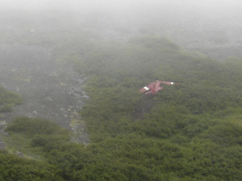 Horrible Details Of Ted Stevens Crash Emerge The Two Way Npr