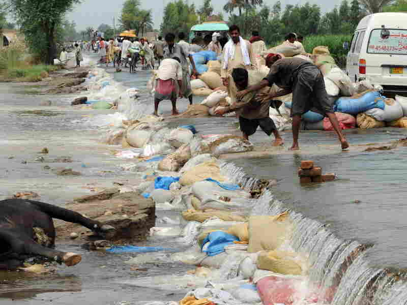 Pakistani villagers lay sandbags.