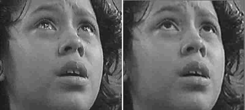 Example of tear and non-tear photos from a study by Randolph Cornelius