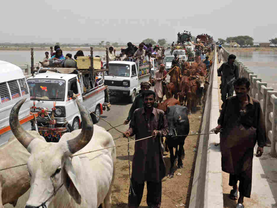 Pakistani flood-affected villagers trave
