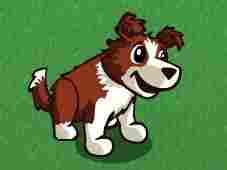 A virtual dog. Farmville Facebook Photo