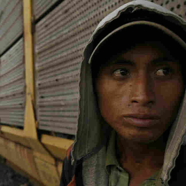 Migrants Are Prey In Mexico's Deadly Violence