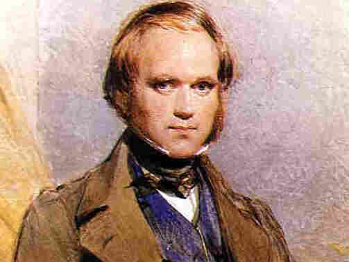 The young Charles Darwin.