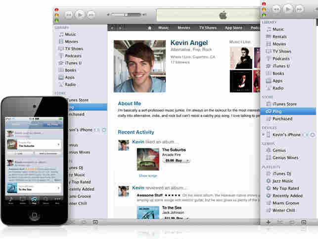 Screenshot of Ping