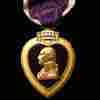 Purple Hearts Elusive For Traumatic Brain Injuries