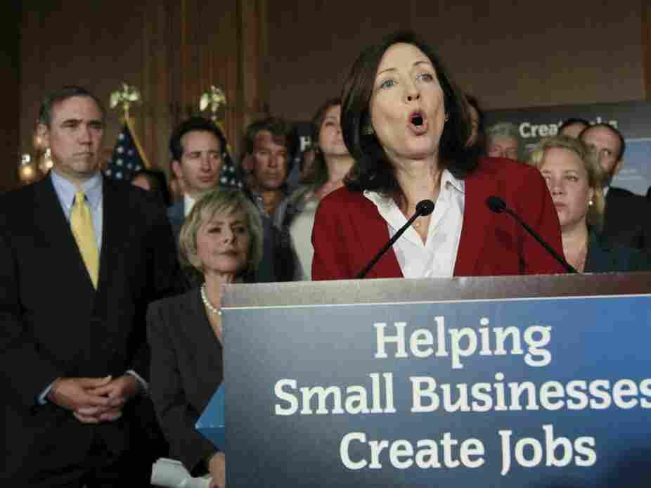 Senate Democrats rally for small biz bill