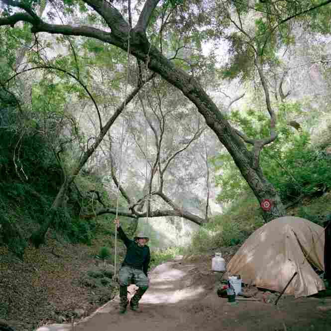 Prospector Rick Skow at his campsite in Angeles National Forest, Calif.