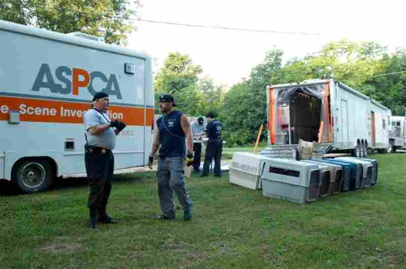 In July 2009, the ASPCA, working with law enforcement, participated in the largest dogfighting raid in U.S. history.