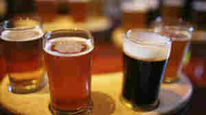 A sampling of beers, ranging in color from golden to dark brown