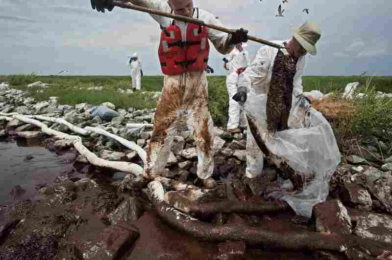 Workers bag oil-collecting pom-poms in Barataria Bay, La., with absorbent tubes at their feet. According to National Geographic, the cleanup had generated almost 40,000 tons of solid waste by the end of July.