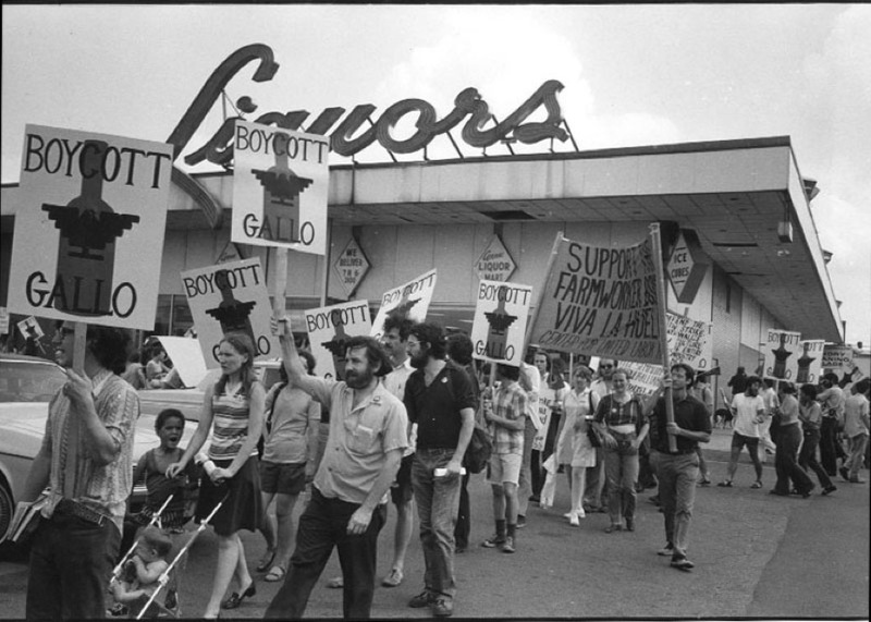 chicano walkout essay They organized a boycott against the school through walkouts through student walkouts at school, the adults in the chicano communities 5 chicana feminism.