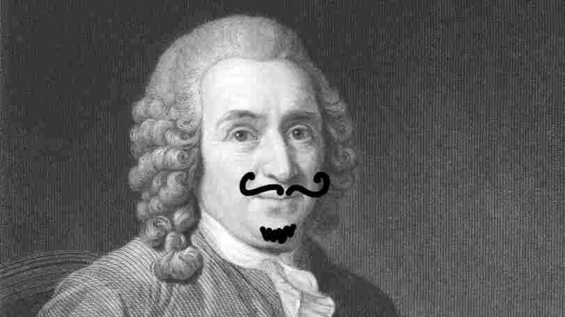 Linnaeus with a mustache.