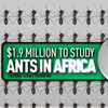 Screen grab from an ad a conservative group ran accusing a Democrat of supporting studying ants.