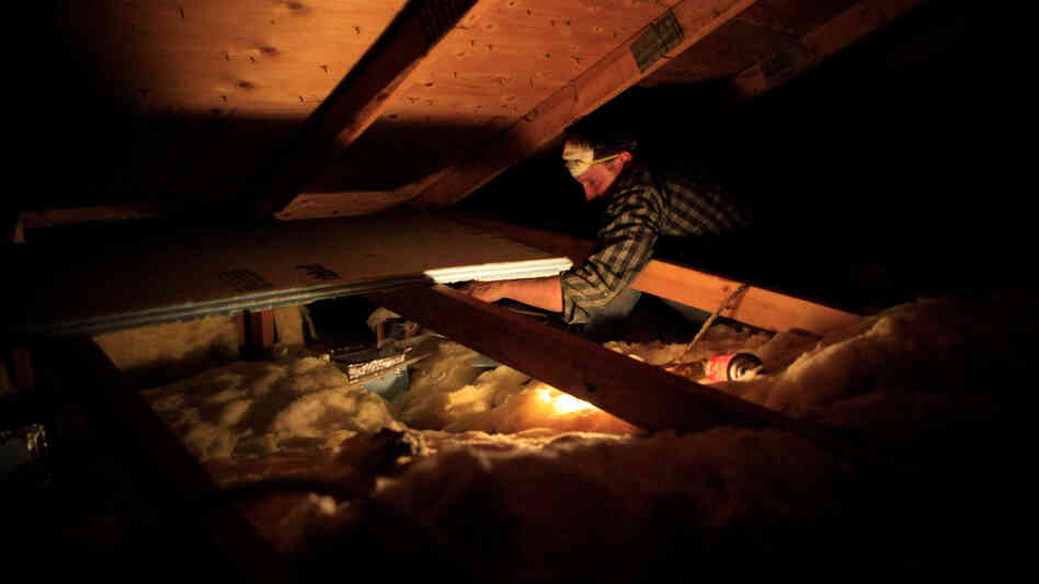 A worker with Home Energy Loss Professionals retrofits a home.