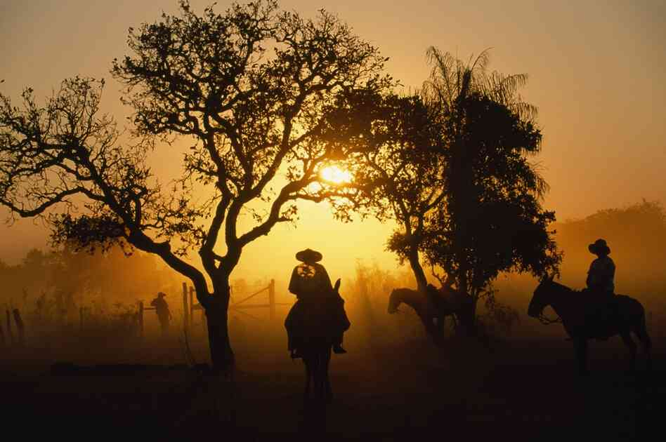 Silhouettes of gauchos as they relax at the end of the day in Pantanal, Brazil