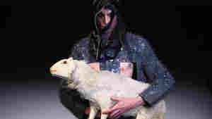 Entirely Real Photos: Who Made This Outfit, Baaaaaa-b Mackie? (Am I Right?)