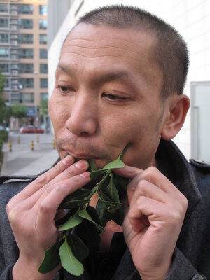 Guo Yong blows on leaves to mimic birdsong.
